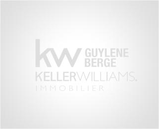 A vendre Saint Laurent D'aigouze  3011916873 Berge immo